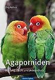 *Agaporniden: Haltung, Zucht und Artenschutz