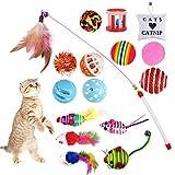 goldge giocattoli per gatti, gatto giocattoli interattivi gioco per gattino kitten indoor, 16 pezzi