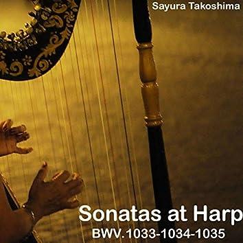 Sonatas at Harp, BWV. 1033-1034-1035