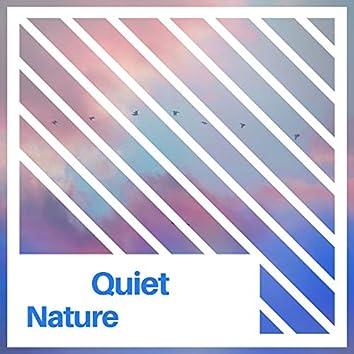 #Quiet Nature
