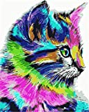 N/W Lienzo DIY Pintura Al Óleo Manualidades para Pintar Pintura por Numeros Adultos Niños - Animal Gato De Color 40X50Cm