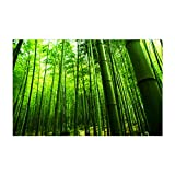 Libaoge Fish Tank Background Bamboo Forest Aquarium Backdrop Sticker Wallpaper Decoration PVC Adhesive Decor Paper Cling Decals Poster 24' W x 16' H