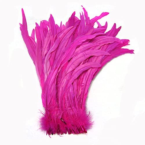 CENFRY Nature Rooster Coque Tails Costume 5 Luxury ☆ popular Feathers Craft Decorat