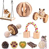 Fansisco 10 Pack Hamster Guinea Pig Toys Set Natural Wooden Play Small Pet Exercise Accessories Teeth Care Molar Toys for Guinea Pig Hamster Rats Gerbils Chinchilla (style1)