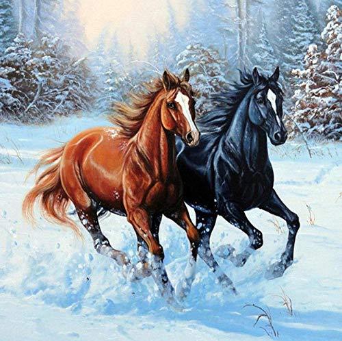 Diamantschilderijen, Diamantborduurwerk, DIY 5D Slaapkamer Woonkamer, Decoratieve schilderijen, Paard Hardlopen in De Sneeuw 40X50CM