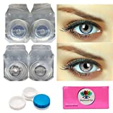 Gold Look Monthly Colored Contact Lenses Zero Power for Eye Combo Pack of