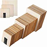 Taproot Essentials 100 Pcs. of 3.2MM MDF Boards for Art and Craft DIY Painting Wooden Coaster Square...