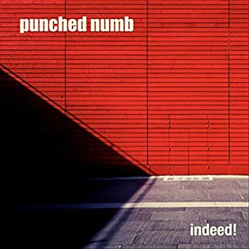 Punched Numb