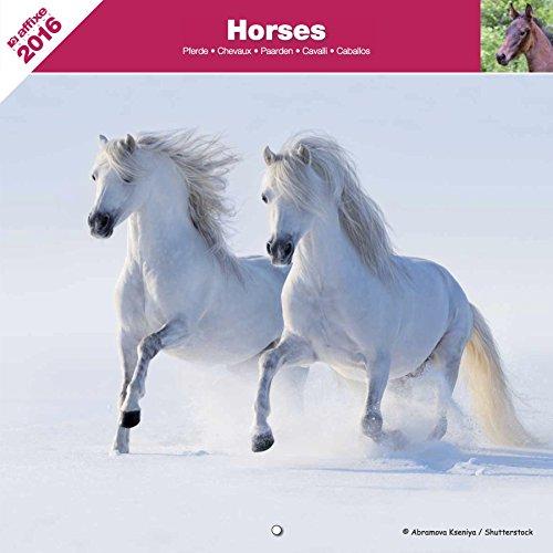 Kalender 2016 Pferde - Horses - Affixe