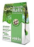 Velda - Palline fertilizzanti per piante, 50 palline, palline per la crescita, 122250...