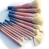 Gradient Color Pro 14pcs Juego de Pinceles de Maquillaje Cosmético Base en Polvo Sombra de Ojos Eyeliner Kits de Pinceles Herramienta de Pincel de Maquillaje