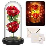 Becoyou Rosa Eterna, Rosa de Cristal Rosa Preservadas Regalos para San Valentin Romántica Sorpresa Regalo Cumpleaños Mujer San Valentín Decoracion