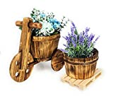 Pack » Macetero Decorativo Triciclo + Mini Palet Europeo de Madera + Macetero de Madera Redondo (Macetero Decorativo)