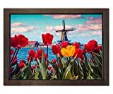 Cuadro de tulipán con diseño de paisaje de lona, 40 x 60 cm