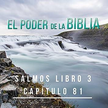 Salmos Libro 3 Capítulos 81 - Single