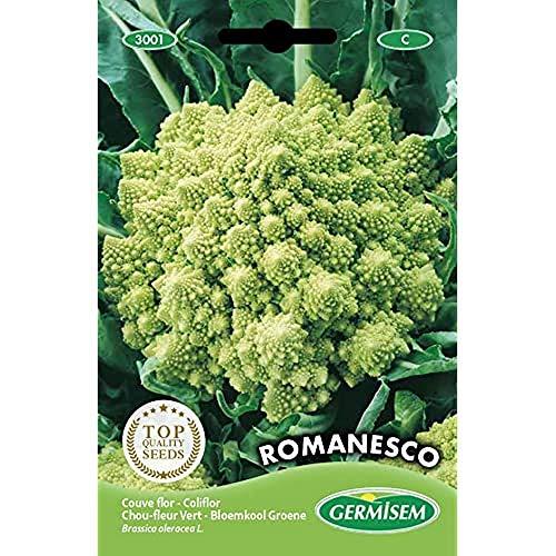 Germisem Blumenkohl ROMANESCO, mehrfarbig, EC3001