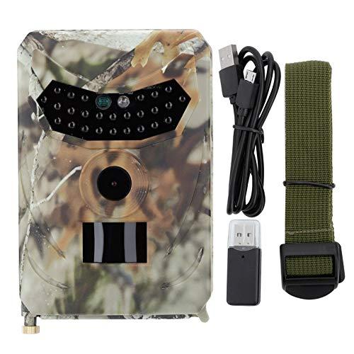 Leyeet - Videocamera per la caccia di una videosorveglianza per la vita selvatica da 12 MP