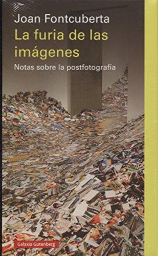La furia de las imágenes (Ensayo)