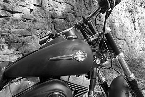 Zopix Poster Motorrad Harley Davidson Fatbob Wandbild - Premium (DIN A2, versch. Größen) - 190g Premium-Papierdruck - Garantierte Top-Qualität