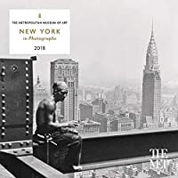 New York in Photographs 2019 Mini Wall Calendar