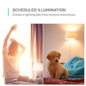 eufy Lumos Smart Bulb By Anker-Tunable White, Soft White To Daylight (2700K-6500K), 9W, Works With Amazon Alexa, No Hub Required, Wi-Fi, 60W Equivalent, Dimmable LED Light Bulb, A19, E26, 2-Pack