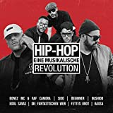 Hip Hop-Eine Musikalische Revolution