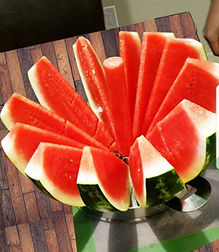 Watermelon Pineapple Fruit Cutter Slicer and Corer Large Stainless Steel 157quot Multi Functional Handheld 12 Piece Round Divider with 420 Blades
