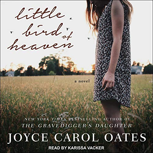 Little Bird of Heaven audiobook cover art