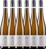 VINELLO 6er Weinpaket Weißwein - Sauvignon Blanc eins zu eins 2020 - A. Diehl mit einem VINELLO.weinausgießer | veganer Weißwein | deutscher Sommerwein aus der Pfalz | 6 x 0,75 Liter