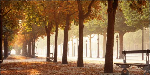 Posterlounge Lienzo 40 x 20 cm: Avenue Des Champs-Elysees, Paris de Panoramic Images - Cuadro Terminado, Cuadro sobre Bastidor, lámina terminada sobre Lienzo auténtico, impresión en Lienzo