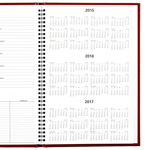 DayMinder Monthly Planner 2016, Premiere, 7.88 x 11.88 Inches, Assorted Colors - Color May Vary (G470H-10) Photo #7