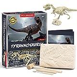 welltop Fósil de Dinosaurio,Excavar y Descubrir Dinosaurio jurásico para niños,Rompecabezas Huesos Educativo Arqueología Fósil Esqueleto(Tirano saurio Rex)