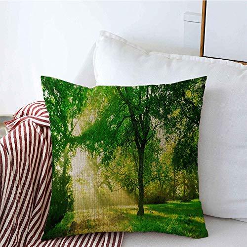 Fundas de almohada decorativas escénicas en bosque verde mañana amanecer baúl primavera naturaleza soleados parques desierto al aire libre al aire libre Funda de Cojine 45 X 45CM