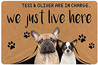 MyPupSocks Personalized Pet Dog Family Picture Name Doormat Text is in Charge We Just Live Here Doormat 23.6 x 15.7 Inches Entrance Mat Floor Mat Decorative Home Office Welcome Mat