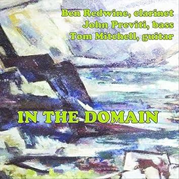 In the Domain (feat. Tom Mitchell & John Previti)