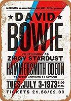 白い桜雑貨屋レトロ ブリキ 看板 コカ 通販 David Bowie in London 壁飾 アンティーク メタル レトロ 看板 販売(20x30cm)