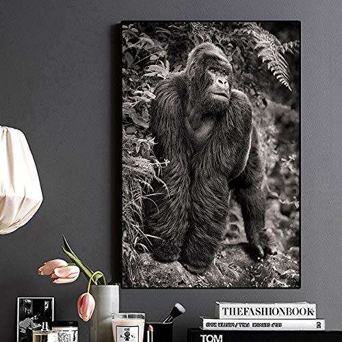 sanzangtang Rahmenlose Malerei Schwarz-Weiß-Gorilla-Leinwandmalerei-Plakate und druckt wild lebende WandkunstCGQ5883 40X72cm