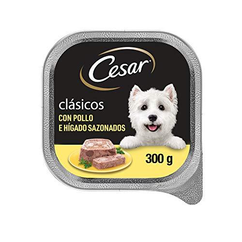 César Comida Húmeda para Perros Sabor Pollo e hígado (Pack de 20 Tarrinas x 300g)