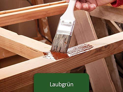 Holzfarbe seidenmatt Holzlack BEKATEQ BE-420 Holzschutzfarbe auf Wasserbasis Holzmöbel streichen (1L, Grün)