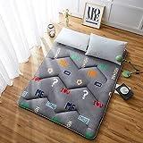 J-Kissen Boden Tatami-Matte, Schlafmatratzenauflage Pad Folding Dicker, Futon-Matratze Kissen, Studentenwohnheim Schlafmatte (Color : F, Size : 100x200cm(39x79inch))
