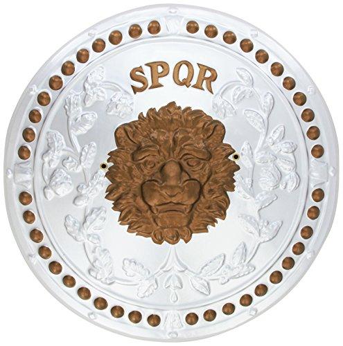 D-guisement romaine 155239 Bouclier
