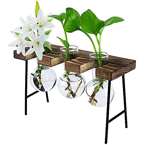 Fauge Terrario de Planta de Escritorio con Soporte de Madera 3 Jarrones de Bombillas Maceta de Vidrio para Plantas DecoracióN de Oficina de JardíN