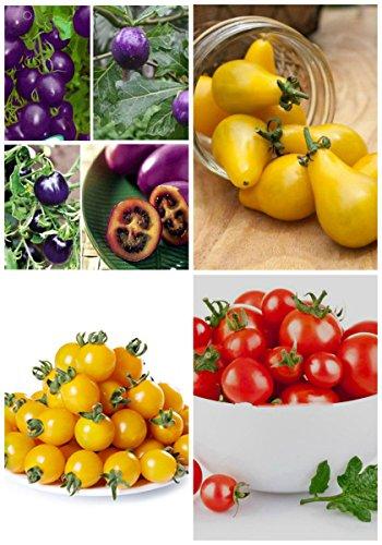 2017 Germination 95% + 6 Groupes Pour Select Graines de fruits 4 en 1 Lot Garden Hot Rare 3 Nutritif