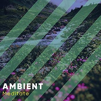 # Ambient Meditate
