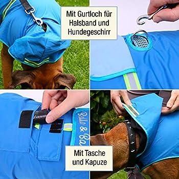 Bella & Balu Imperméable pour chien - Veste de pluie avec capuchon et réflecteurs pour les promenades en toute sécurité et au sec pour votre chien (L | Gris)