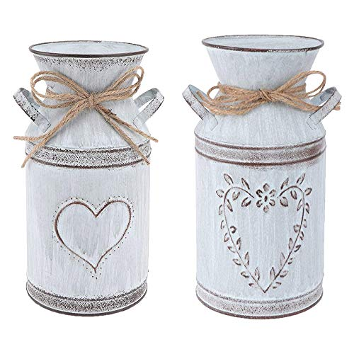 Janly Clearance Sale 2PC Heart-shaped Galvanized Sheet Garden Plating Flower Pot Home Decoration Vase , Home Decor forHome & Garden , Easter St Patrick's Day Deal (Multicolor)