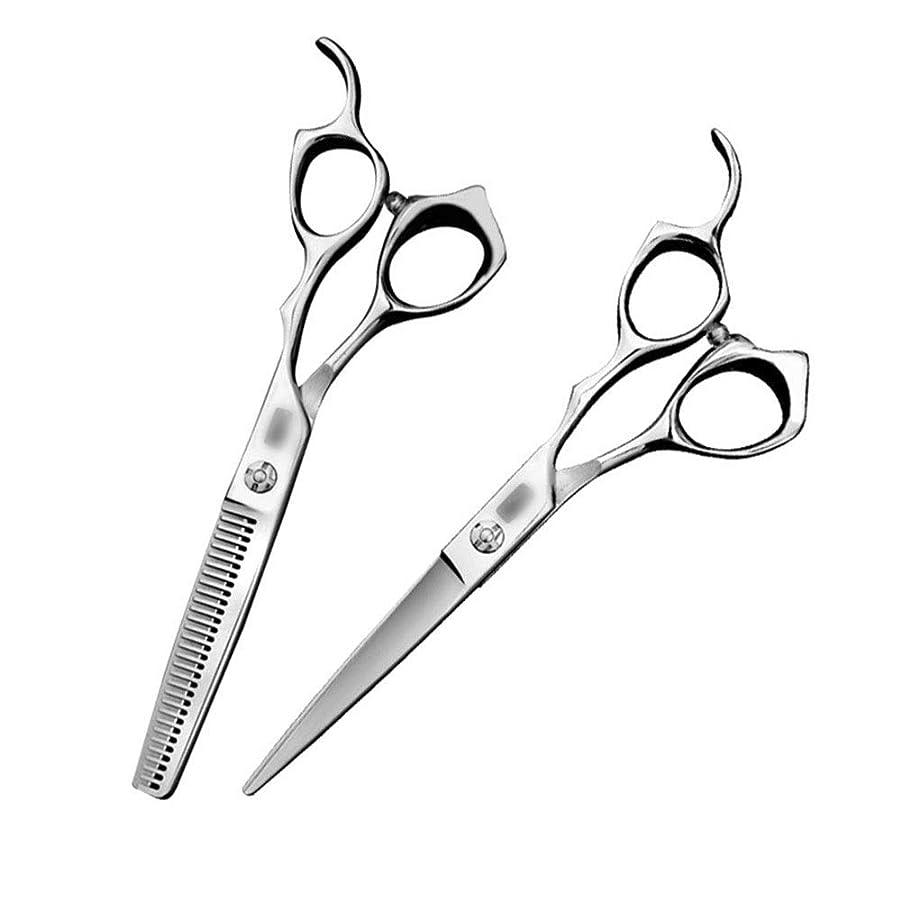 カットハサミ ヘアスタイリングツール 6インチ美容院プロフェッショナルハイエンド理髪はさみ散髪フラットはさみ+歯はさみツールセット ヘアカットシザー (色 : Silver)
