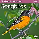 Songbirds Mini Wall Calendar 2020 Monthly January-December 7' x 7'