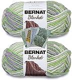 Bernat Blanket Yarn - Big Ball (10.5 oz) - 2 Pack with Pattern Cards in Color (Lilac Leaf)