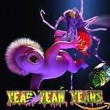 Songtexte von Yeah Yeah Yeahs - Mosquito